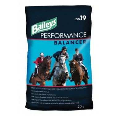 Baileys - No 19 - Performance Balancer - 20kg