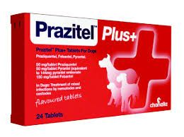 Prazital Plus - Dog Wormer - Pack of two Tablets